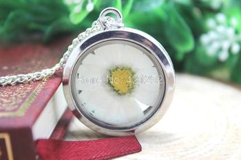 6pcs Window Locket Necklace real Chrysanthemum flower Glass locket necklace six color silver